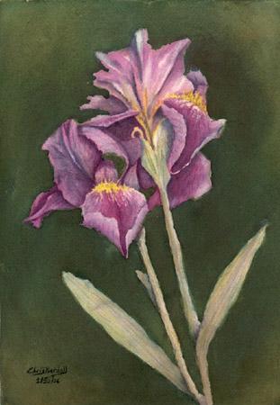 """""""Irises"""" Watercolor Painting"""