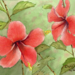 """Hibiscus Miniature"" Watercolor Painting"