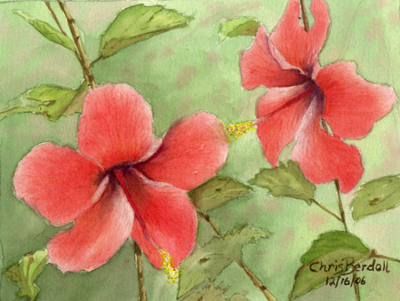"""Hibiscus Miniature"" Watercolor Painting"