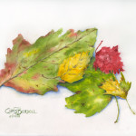 """""""Autumn Leaves Study"""" Watercolor Painting"""