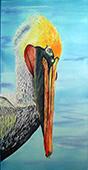 pelican slide