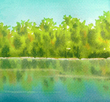 trees_water_snapshot